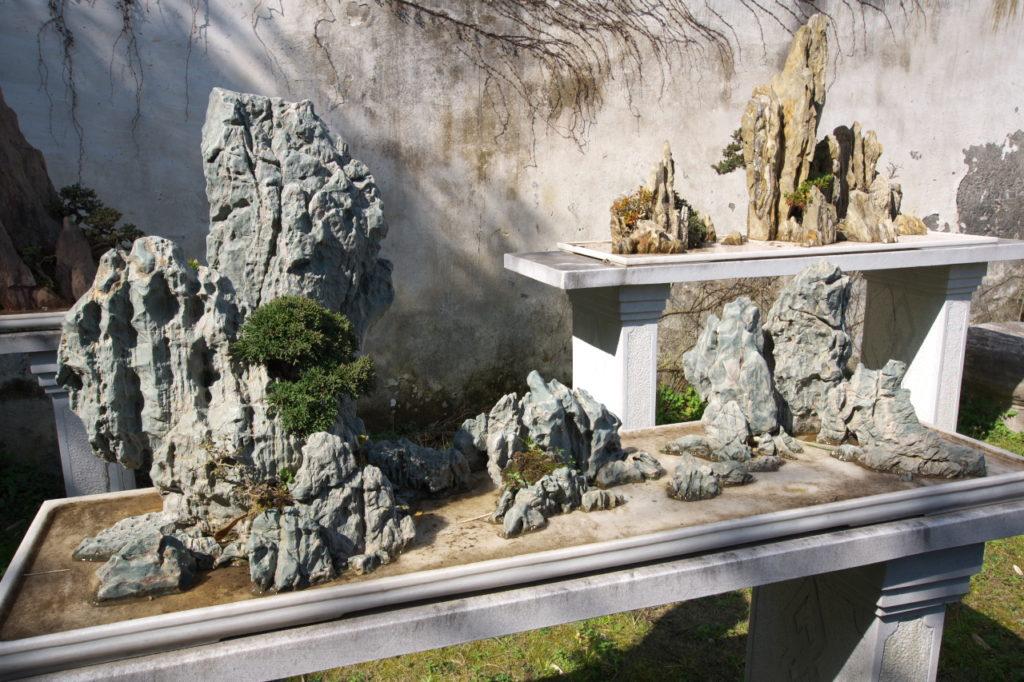岩山盆栽2