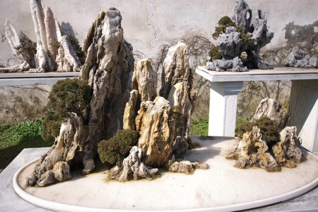 岩山盆栽3