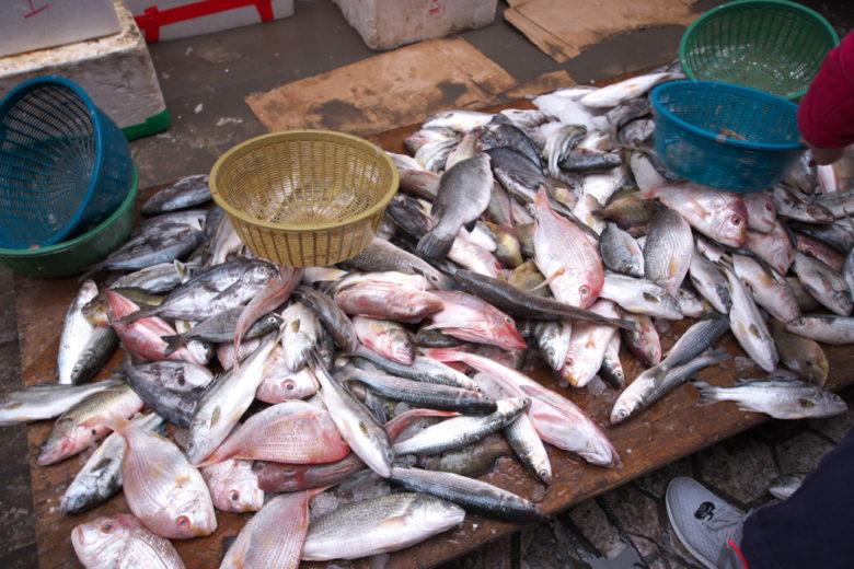 魚のワゴンセール