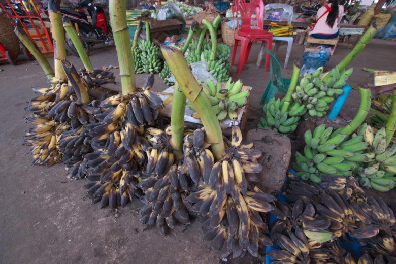 枝売りバナナ