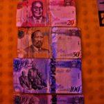 「がんばらないバックパッカー」のボツワナ旅行総費用