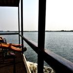【ボツワナ】チョベ川でボートサファリ!動物の密度がすごい(2018年9月5日)