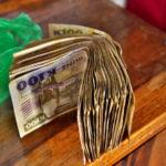 「がんばらないバックパッカー」のザンビア旅行総費用