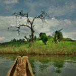 【ウガンダ】カバレからブニョニ湖へ。木彫りのカヌーで遊ぶ(2018年11月14日)