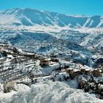 【レバノン】世界遺産カディーシャ渓谷とレバノン杉を見れるか!?&トリポリ観光(2019年1月18日)
