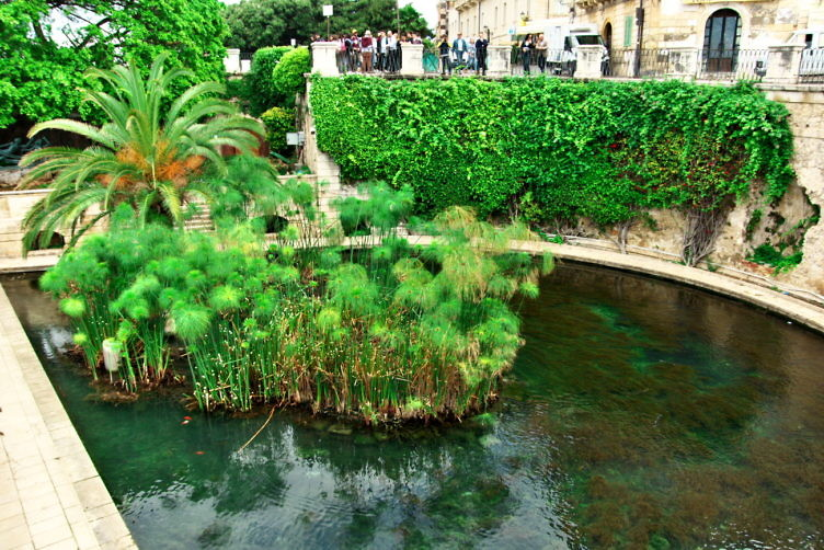 アレトゥーサの泉