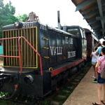 【キューバ】世界遺産ロス・インヘニオス渓谷を走る鉄道に乗った(2019年8月28日)
